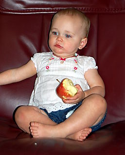 Apple 011