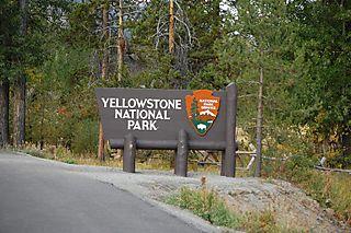 Day 2 yellowstone 011