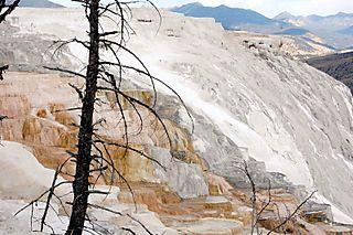 Yellowstone day 3 341
