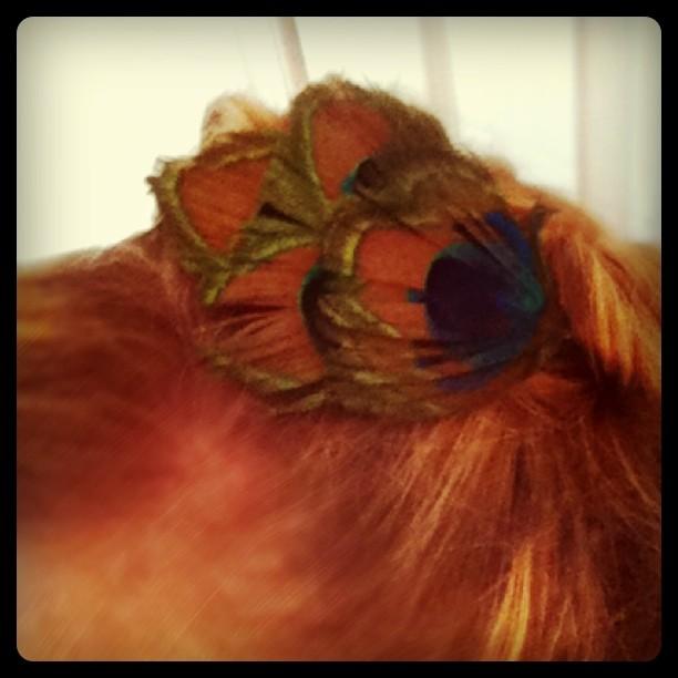 Peacock headband1