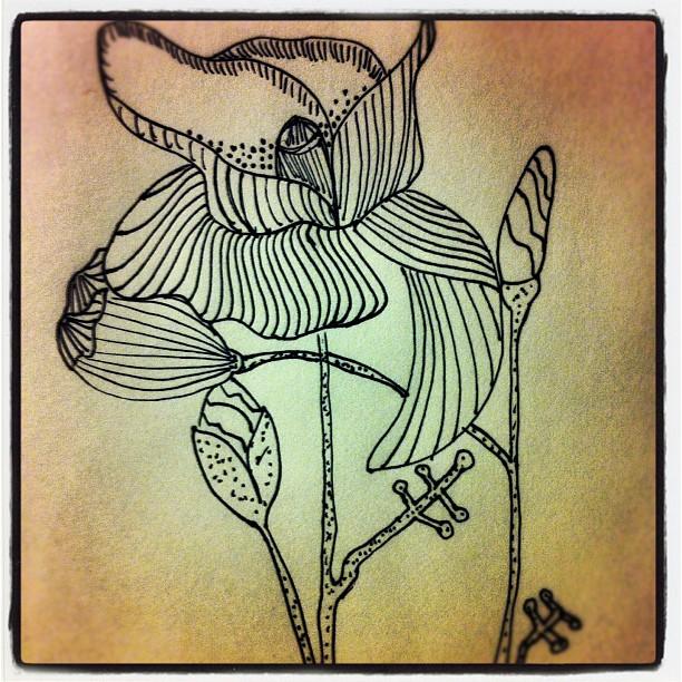 Poppy in sharpie